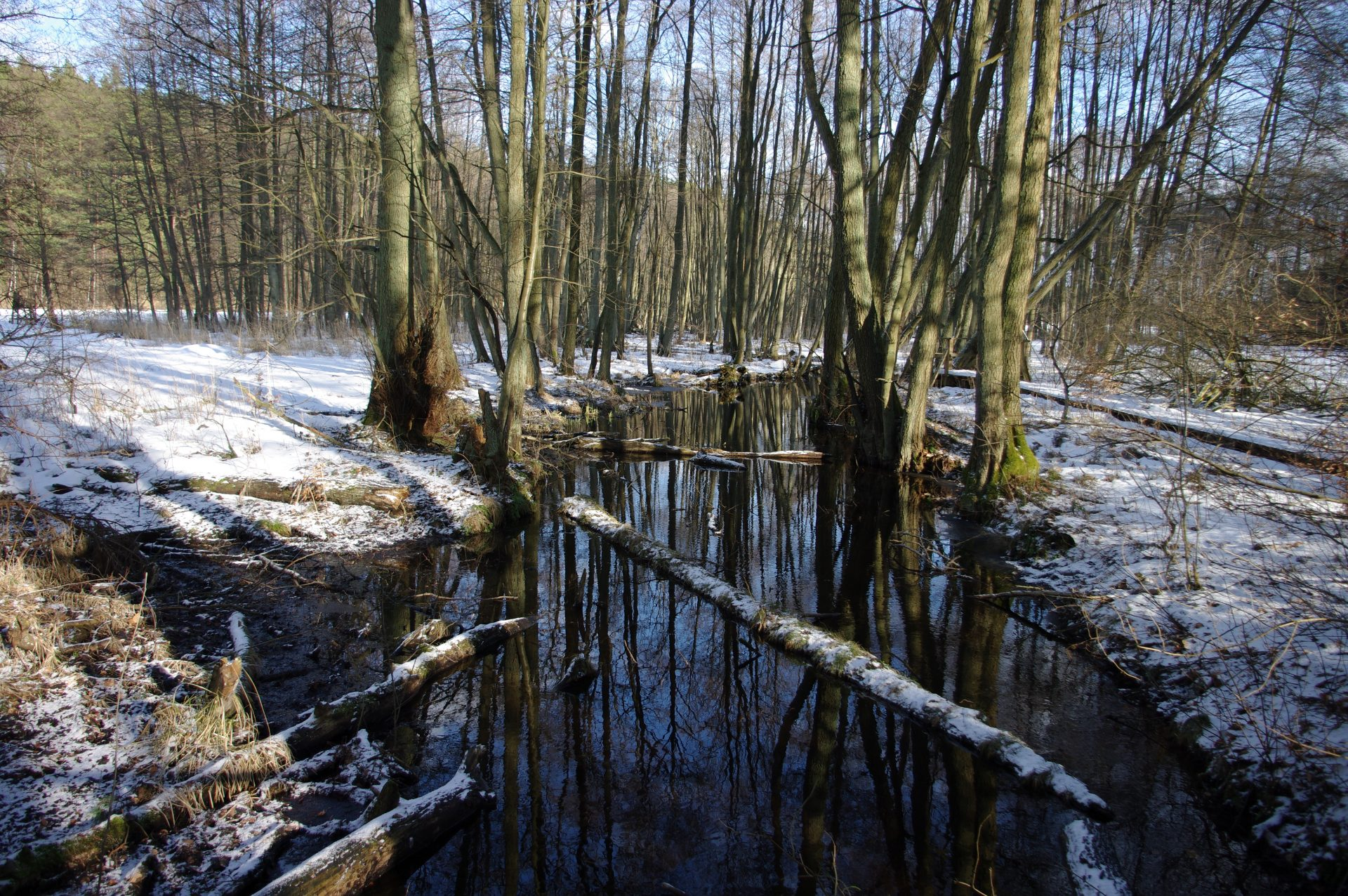 20100306-micha-b-anni-071-winter-seerundgang