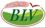 Logo des Brandenburger Landfrauenverbandes e.V.